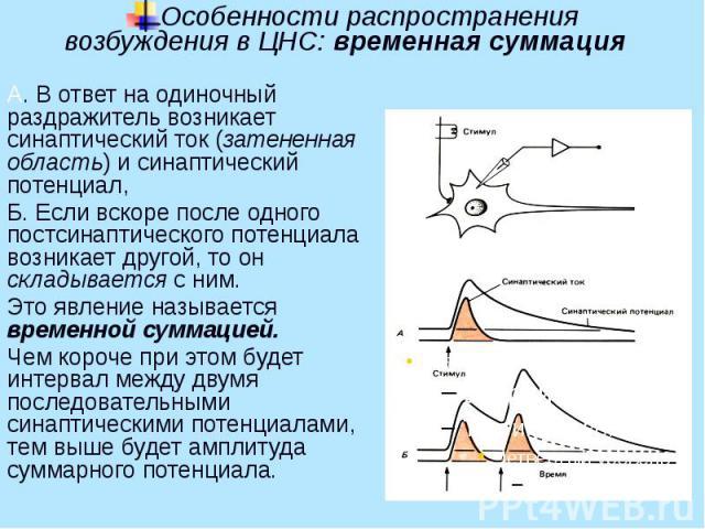 Особенности распространения возбуждения в ЦНС: временная суммация А. В ответ на одиночный раздражитель возникает синаптический ток (затененная область) и синаптический потенциал, Б. Если вскоре после одного постсинаптического потенциала возникает др…