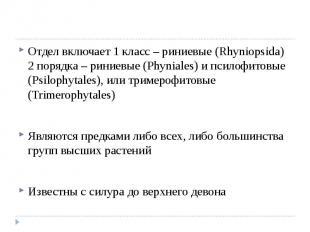 Отдел включает 1 класс – риниевые (Rhyniopsida) 2 порядка – риниевые (Phyniales)