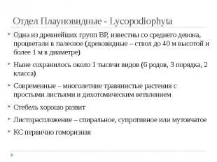Отдел Плауновидные - Lycopodiophyta Одна из древнейших групп ВР, известны со сре