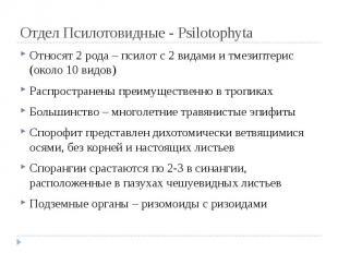 Отдел Псилотовидные - Psilotophyta Относят 2 рода – псилот с 2 видами и тмезипте