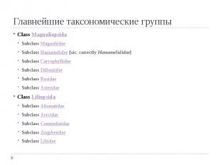 Главнейшие таксономические группы Class Magnoliopsida Subclass Magnoliidae Subcl