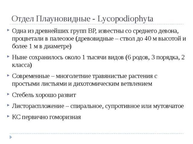 Отдел Плауновидные - Lycopodiophyta Одна из древнейших групп ВР, известны со среднего девона, процветали в палеозое (древовидные – ствол до 40 м высотой и более 1 м в диаметре) Ныне сохранилось около 1 тысячи видов (6 родов, 3 порядка, 2 класса) Сов…