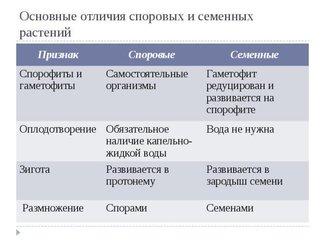 Основные отличия споровых и семенных растений