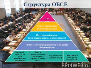 Структура ОБСЕ