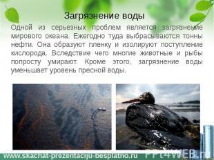 Загрязнение воды Одной из серьезных проблем является загрязнение мирового океана