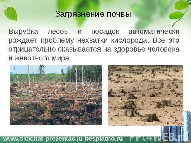 Загрязнение почвы Вырубка лесов и посадок автоматически рождает проблему нехватки кислорода. Все это отрицательно сказывается на здоровье человека и животного мира.