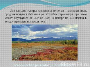 Для климата тундры характерна ветреная и холодная зима, продолжающаяся 8-9 месяц