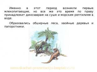 Именно в этот период возникли первые млекопитающие, но все же это время по праву