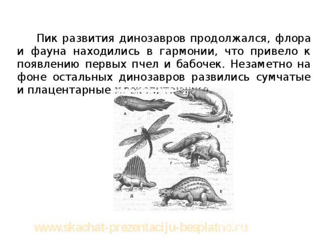 Пик развития динозавров продолжался, флора и фауна находились в гармонии, что привело к появлению первых пчел и бабочек. Незаметно на фоне остальных динозавров развились сумчатые и плацентарные млекопитающие. Пик развития динозавров продолжался, фло…