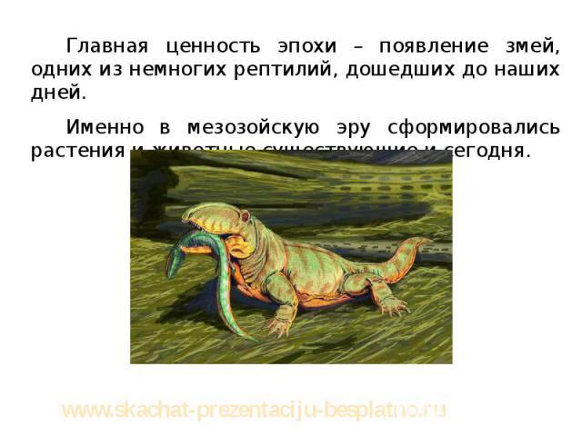 Главная ценность эпохи – появление змей, одних из немногих рептилий, дошедших до наших дней. Главная ценность эпохи – появление змей, одних из немногих рептилий, дошедших до наших дней. Именно в мезозойскую эру сформировались растения и животные сущ…