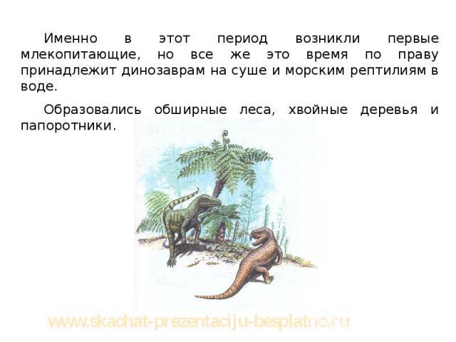 Именно в этот период возникли первые млекопитающие, но все же это время по праву принадлежит динозаврам на суше и морским рептилиям в воде. Именно в этот период возникли первые млекопитающие, но все же это время по праву принадлежит динозаврам на су…