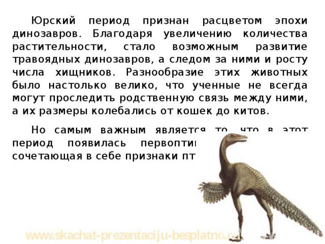 Юрский период признан расцветом эпохи динозавров. Благодаря увеличению количества растительности, стало возможным развитие травоядных динозавров, а следом за ними и росту числа хищников. Разнообразие этих животных было настолько велико, что ученные …