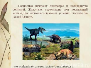 Полностью исчезают динозавры и большинство рептилий. Животные, пережившие этот п