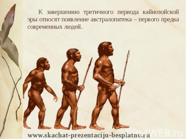 К завершению третичного периода кайнозойской эры относят появление австралопитека – первого предка современных людей. К завершению третичного периода кайнозойской эры относят появление австралопитека – первого предка современных людей.