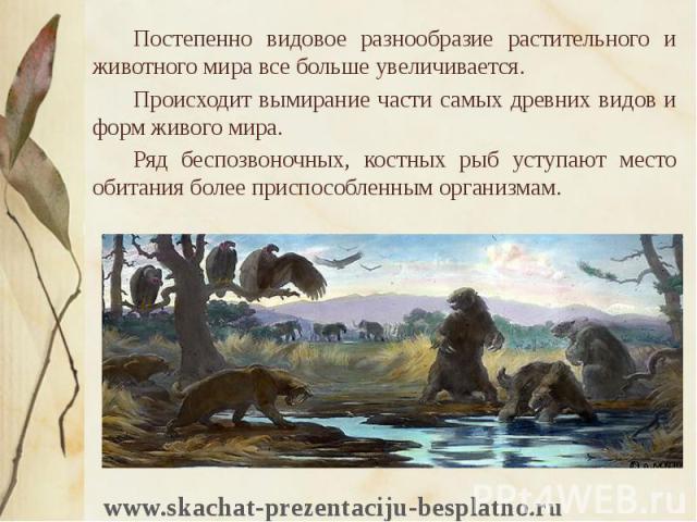 Постепенно видовое разнообразие растительного и животного мира все больше увеличивается. Постепенно видовое разнообразие растительного и животного мира все больше увеличивается. Происходит вымирание части самых древних видов и форм живого мира. Ряд …
