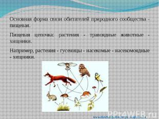 Основная форма связи обитателей природного сообщества - пищевая. Основная форма