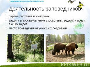 Деятельность заповедников охрана растений и животных, защита и восстановление эк