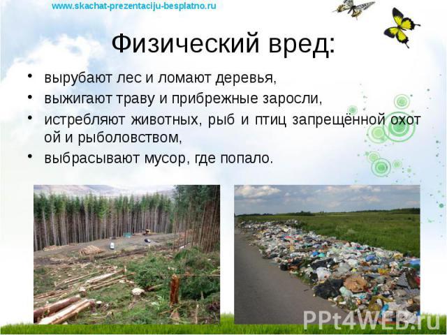 Физический вред: вырубают лес и ломают деревья, выжигают траву и прибрежные заросли, истребляют животных, рыб и птиц запрещённой охотой и рыболовством, выбрасывают мусор, где попало.
