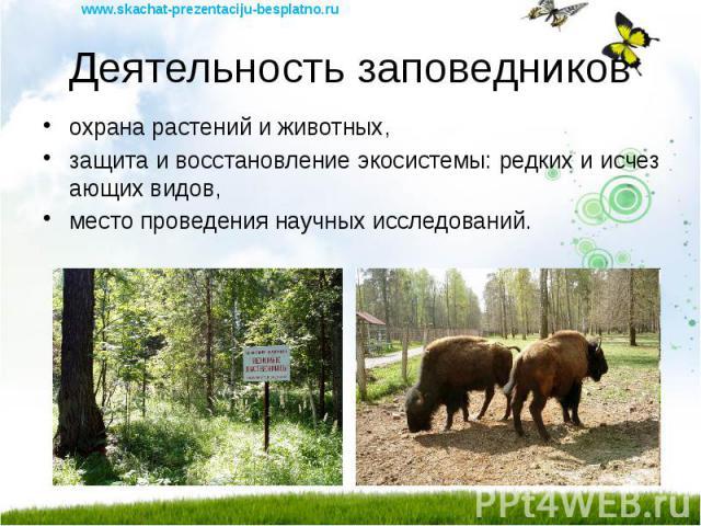 Деятельность заповедников охрана растений и животных, защита и восстановление экосистемы: редких и исчезающих видов, место проведения научных исследований.