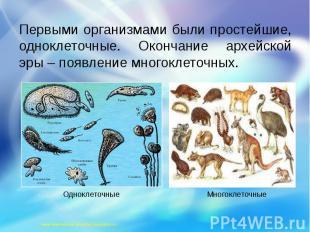 Первыми организмами были простейшие, одноклеточные. Окончание архейской эры – по