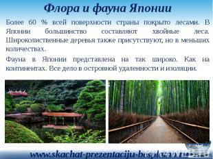 Флора и фауна Японии Более 60 % всей поверхности страны покрыто лесами. В Японии
