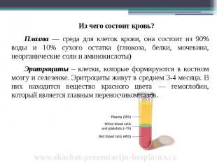 Из чего состоит кровь? Из чего состоит кровь? Плазма — среда для клеток крови, о
