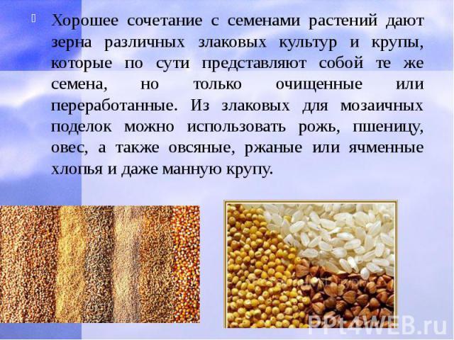 Хорошее сочетание с семенами растений дают зерна различных злаковых культур и крупы, которые по сути представляют собой те же семена, но только очищенные или переработанные. Из злаковых для мозаичных поделок можно использовать рожь, пшеницу, овес, а…