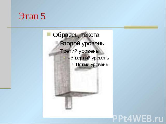 Этап 5