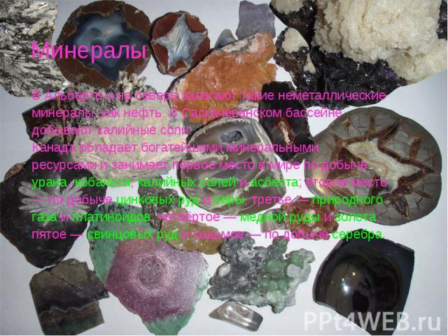 Минералы В Альберте и на севере залегают такие неметаллические минералы, как нефть. В Саскачеванском бассейне добывают калийные соли. Канада обладает богатейшими минеральными ресурсами и занимает первое место в мире по добыче урана, кобальта, калийн…