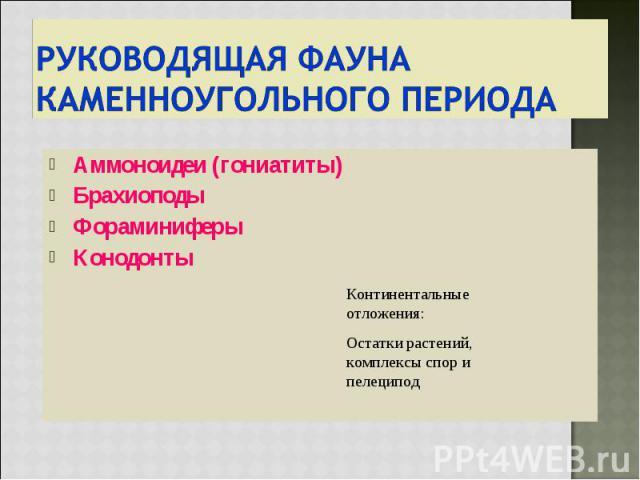 Аммоноидеи (гониатиты) Аммоноидеи (гониатиты) Брахиоподы Фораминиферы Конодонты