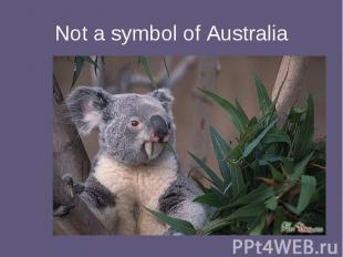 Not a symbol of Australia