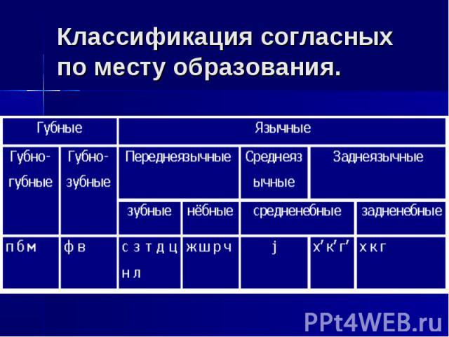 Классификация согласных по месту образования.