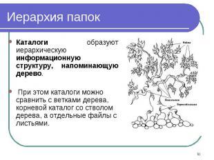 Каталоги образуют иерархическую информационную структуру, напоминающую дерево. К