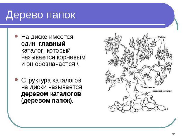 На диске имеется один главный каталог, который называется корневым и он обозначается \. На диске имеется один главный каталог, который называется корневым и он обозначается \. Структура каталогов на диски называется деревом каталогов (деревом папок).