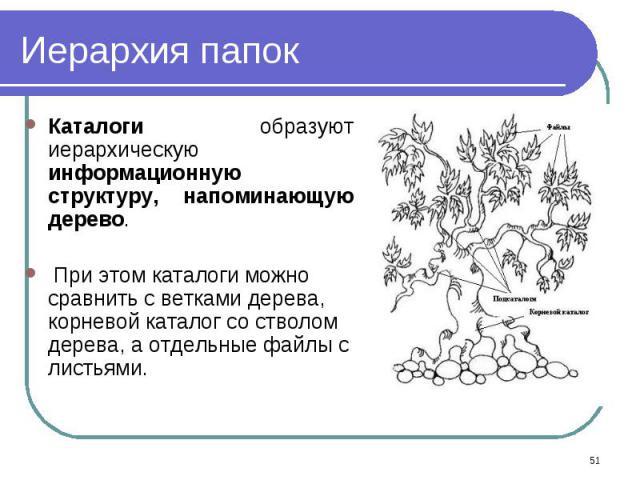 Каталоги образуют иерархическую информационную структуру, напоминающую дерево. Каталоги образуют иерархическую информационную структуру, напоминающую дерево. При этом каталоги можно сравнить с ветками дерева, корневой каталог со стволом дерева, а от…