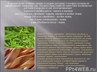 В производстве особенно ценны те редкие растения, у которых волокна не одревесне