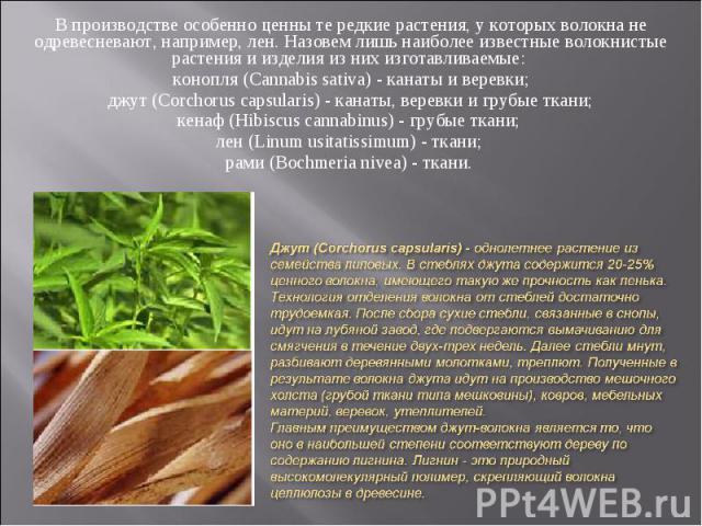В производстве особенно ценны те редкие растения, у которых волокна не одревесневают, например, лен. Назовем лишь наиболее известные волокнистые растения и изделия из них изготавливаемые: В производстве особенно ценны те редкие растения, у которых в…