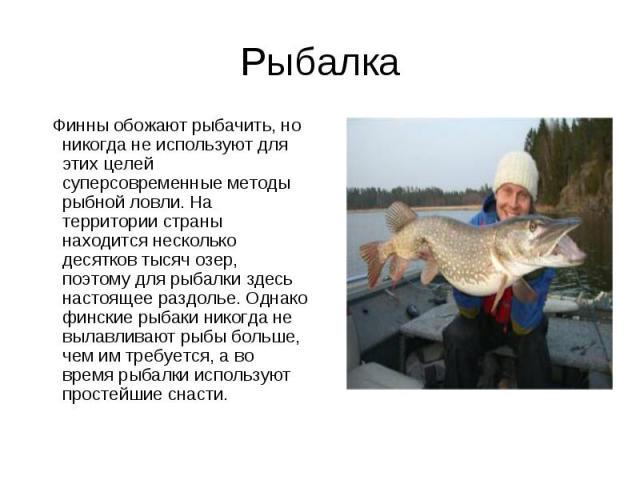 Рыбалка Финны обожают рыбачить, но никогда не используют для этих целей суперсовременные методы рыбной ловли. На территории страны находится несколько десятков тысяч озер, поэтому для рыбалки здесь настоящее раздолье. Однако финские рыбаки никогда н…
