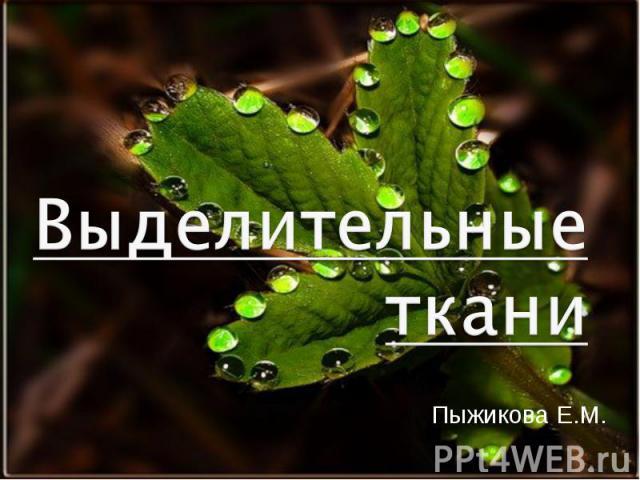 Пыжикова Е.М. Пыжикова Е.М.