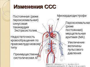 Постоянная (реже пароксизмальная) синусовая тахикардия Постоянная (реже пароксиз
