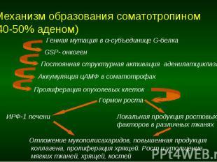 Механизм образования соматотропином (40-50% аденом)