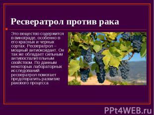 Ресвератрол против рака Это вещество содержится в винограде, особенно в его крас
