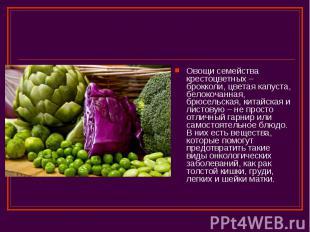 Овощи семейства крестоцветных – брокколи, цветая капуста, белокочанная, брюсельс