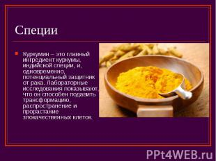 Специи Куркумин – это главный ингредиент куркумы, индийской специи, и, одновреме