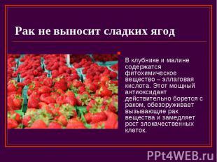 Рак не выносит сладких ягод В клубнике и малине содержатся фитохимическое вещест