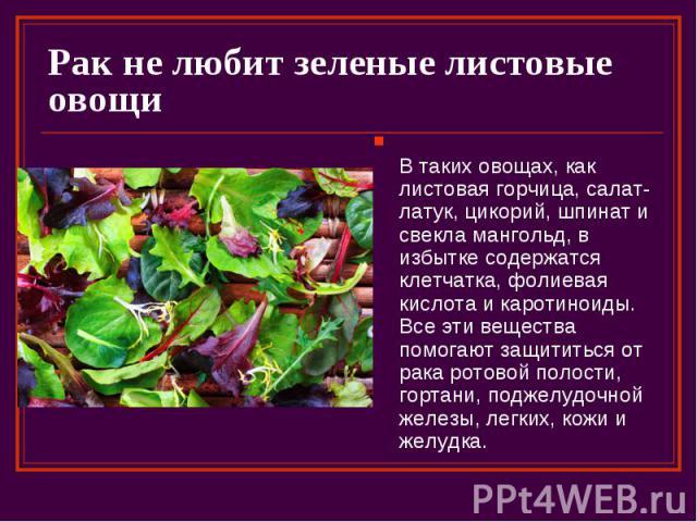 Рак не любит зеленые листовые овощи В таких овощах, как листовая горчица, салат-латук, цикорий, шпинат и свекла мангольд, в избытке содержатся клетчатка, фолиевая кислота и каротиноиды. Все эти вещества помогают защититься от рака ротовой полости, г…