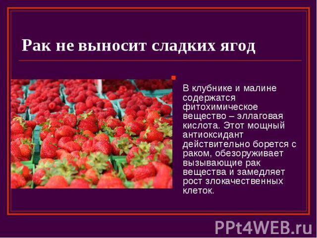 Рак не выносит сладких ягод В клубнике и малине содержатся фитохимическое вещество – эллаговая кислота. Этот мощный антиоксидант действительно борется с раком, обезоруживает вызывающие рак вещества и замедляет рост злокачественных клеток.