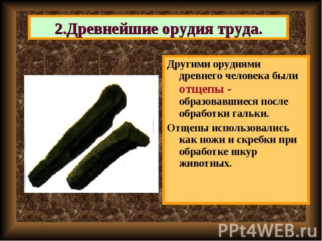 Другими орудиями древнего человека были отщепы - образовавшиеся после обработки гальки. Другими орудиями древнего человека были отщепы - образовавшиеся после обработки гальки. Отщепы использовались как ножи и скребки при обработке шкур животных.