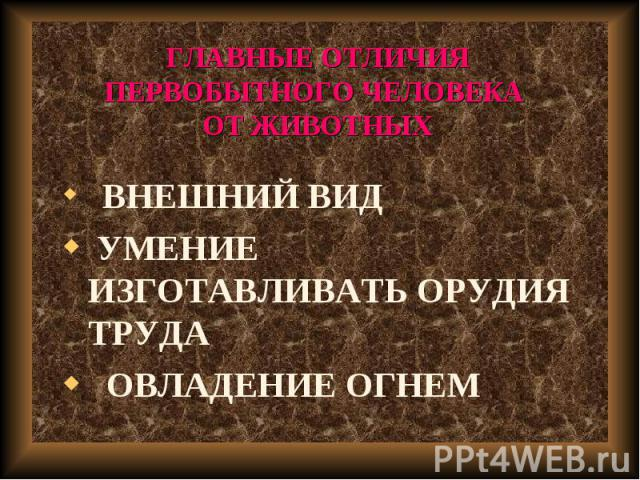 ВНЕШНИЙ ВИД ВНЕШНИЙ ВИД УМЕНИЕ ИЗГОТАВЛИВАТЬ ОРУДИЯ ТРУДА ОВЛАДЕНИЕ ОГНЕМ