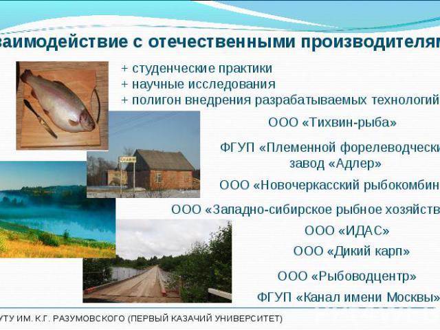ООО «Тихвин-рыба» ООО «Тихвин-рыба»